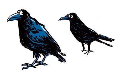 corbeau-corneille200