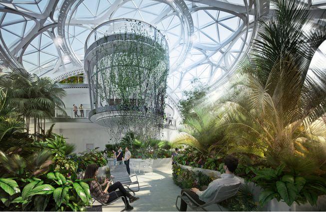 Amazon qui valorise sa marque employeur grâce à ses biospheres