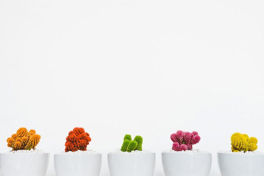 Image Employeur - différenciation