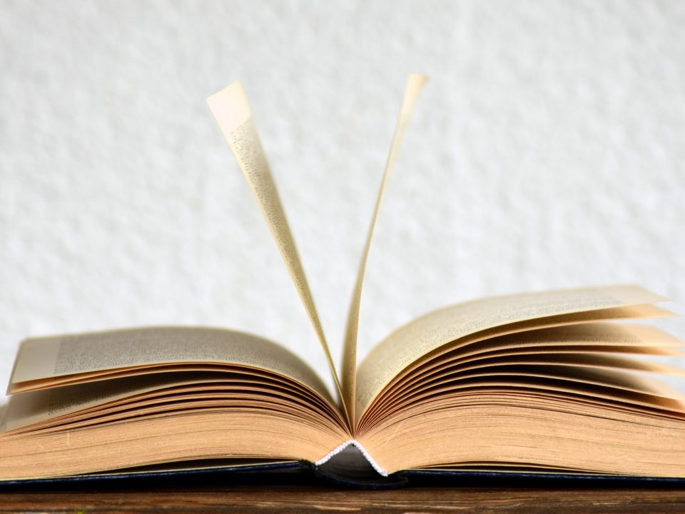 Un livre pour illustrer l'Employer Brand Book