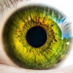 vision-marque-employeur-pme